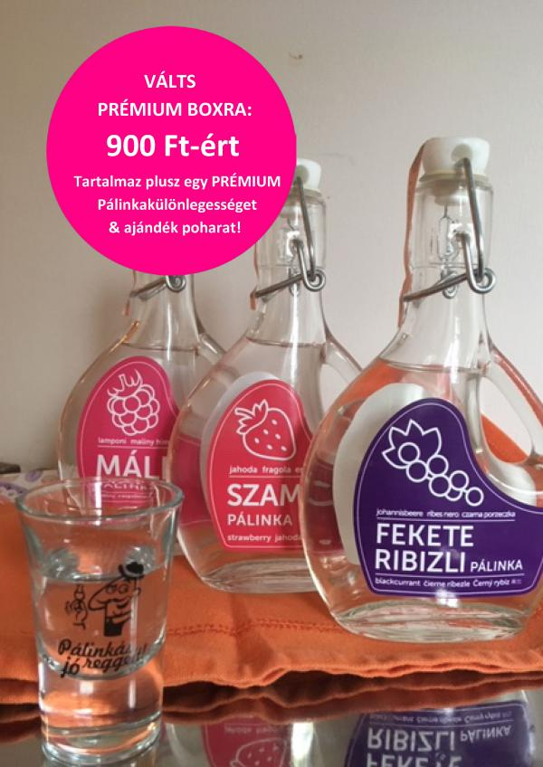 upgrade1palinka
